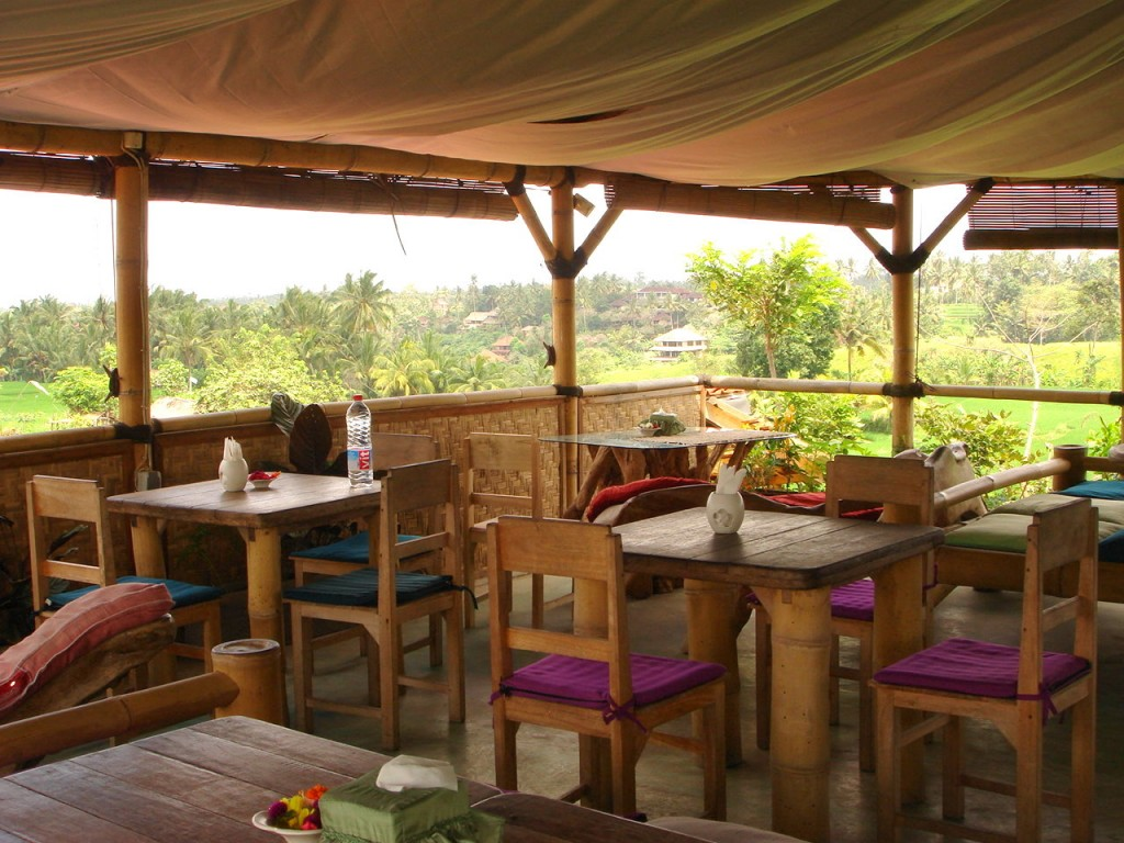Inside Sari Organic which looks out onto lush rice fields