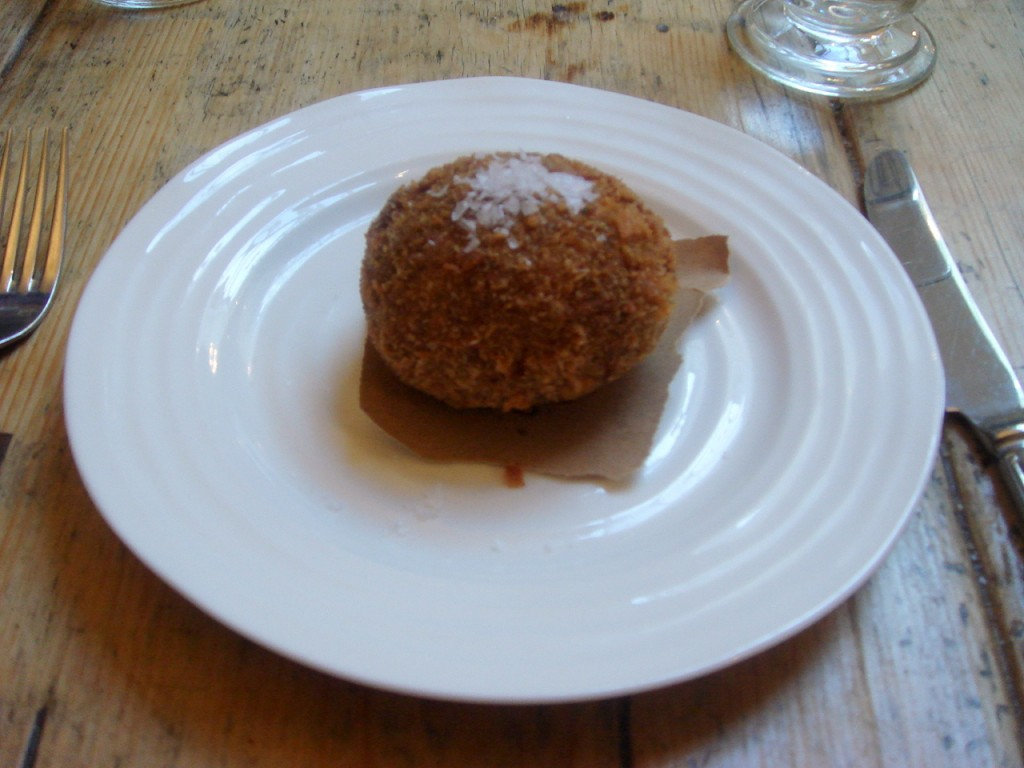 Venison scotch egg