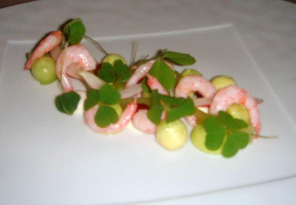Shrimps, horseradish, avocado & gooseberries
