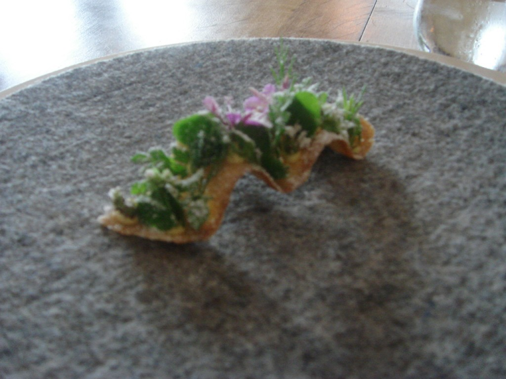 Herbs on crispy toast