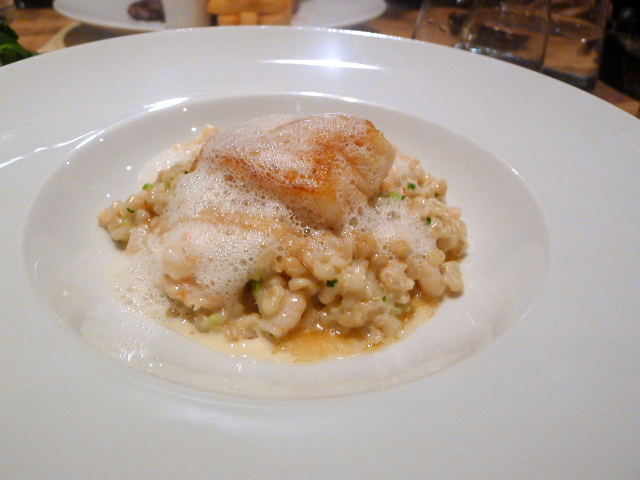 Icelandic cod with prawns & pearl barley