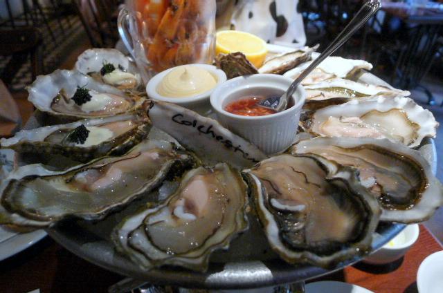 Oysters & prawns