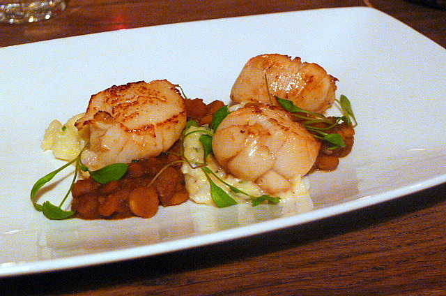 Seared Scottish scallops