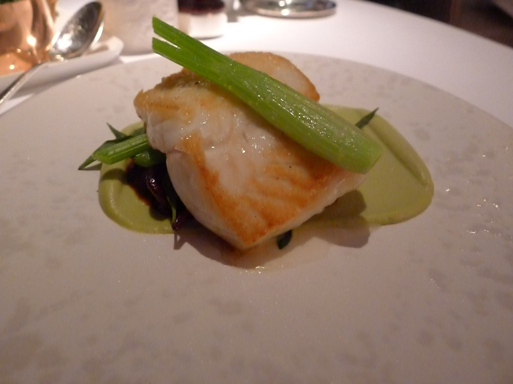 The halibut at Angler