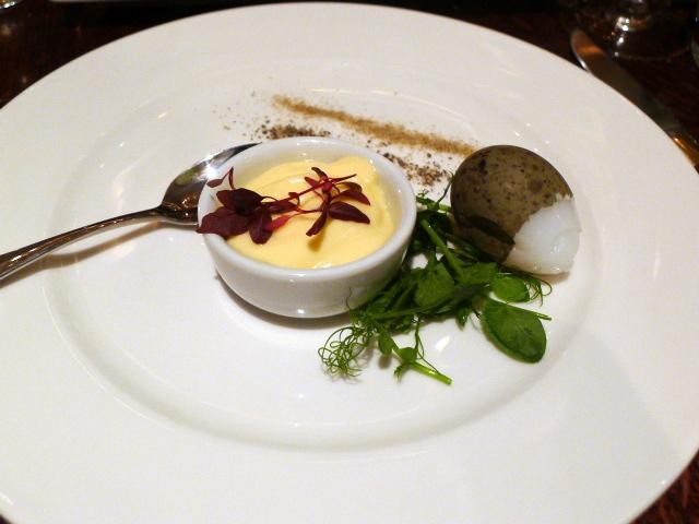 The Botanist - Gull's egg