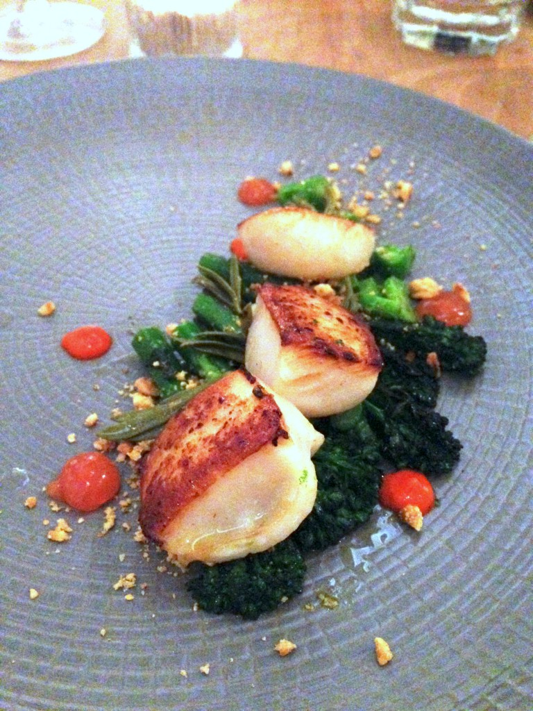 Arbutus - Scottish scallops
