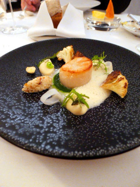Helene Darroze - London Food Blog - Scallop